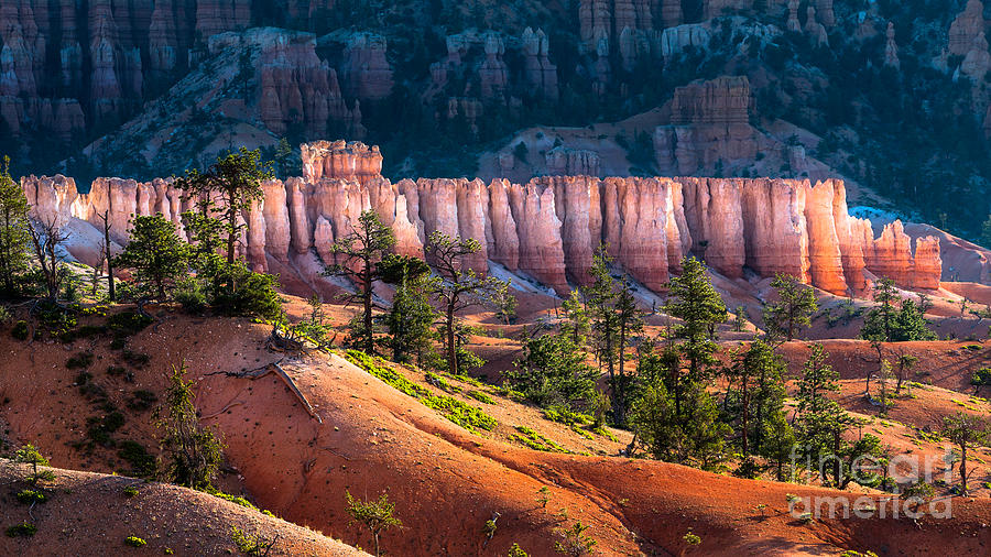 Southwest Photograph - Bryce Canyon by Oscity