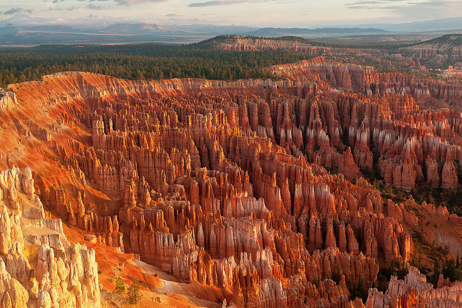 Bryce Canyon Photograph by Phil