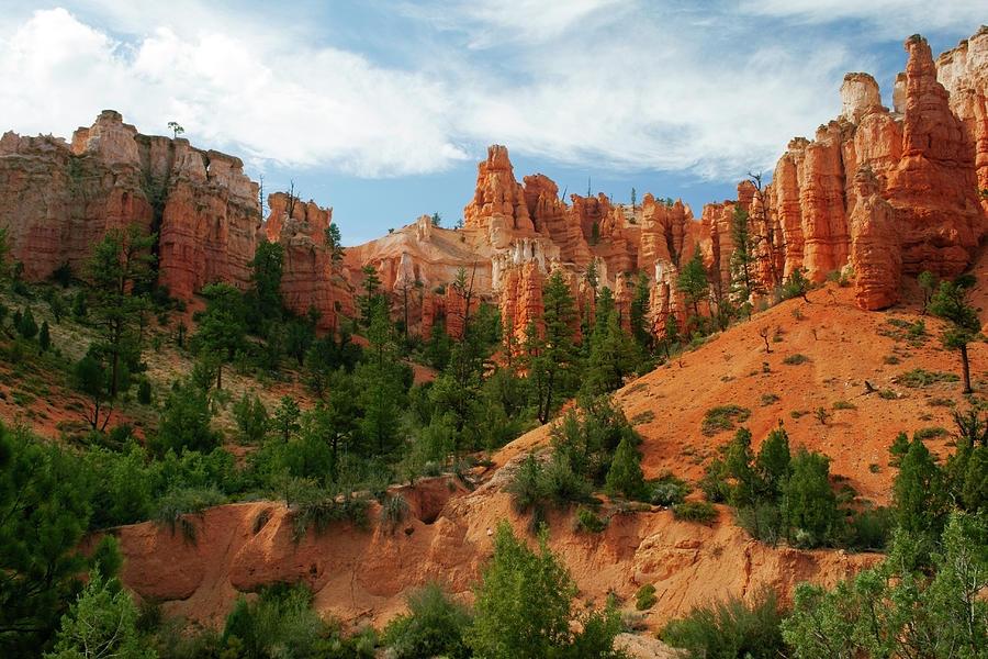 Bryce Canyon Photograph by Wsfurlan