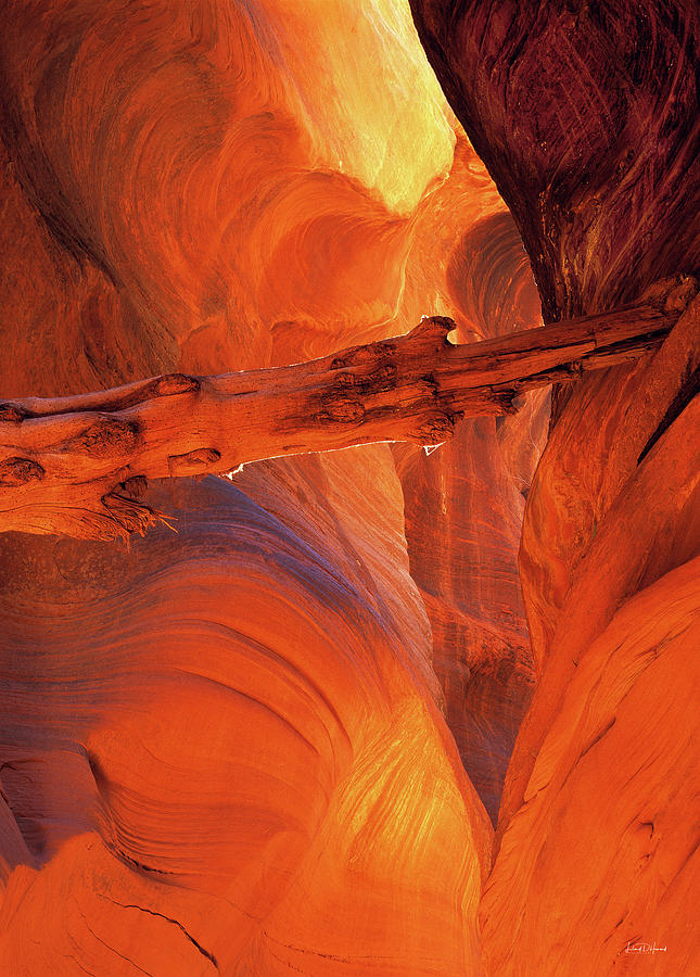 Art In Nature Photograph - Buckskin Gulch by Leland D Howard