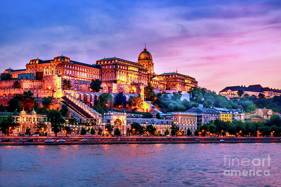 Buda  Castle by Joseph Miko