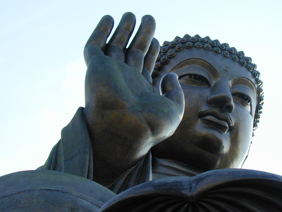 Buddha Photograph by Blackred