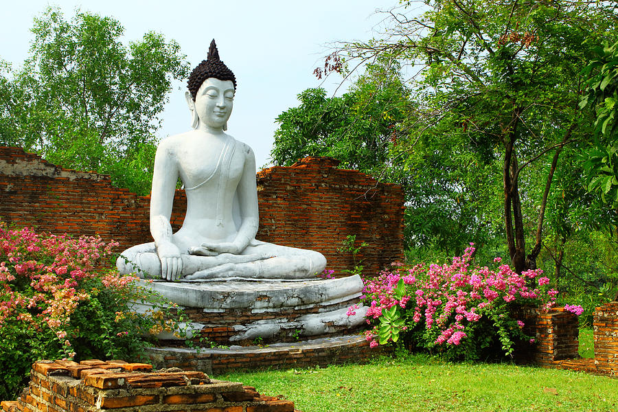 Buddha In Garden Photograph by Ngkaki