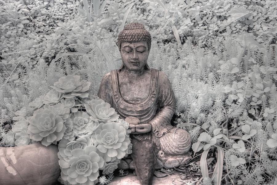 Buddha infrared zen mediation by Jane Linders