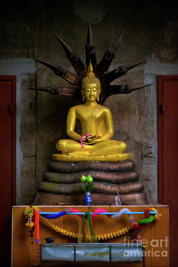 Buddha on a Rural Road by Lee Craker