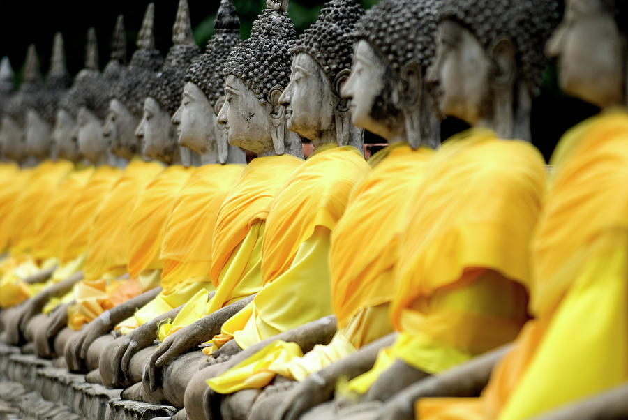 Buddha Statues, Ayuthaya, Thailand Photograph by Rod Porteous / Robertharding