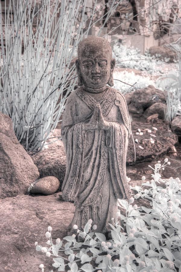 Buddha zen mindfulness by Jane Linders