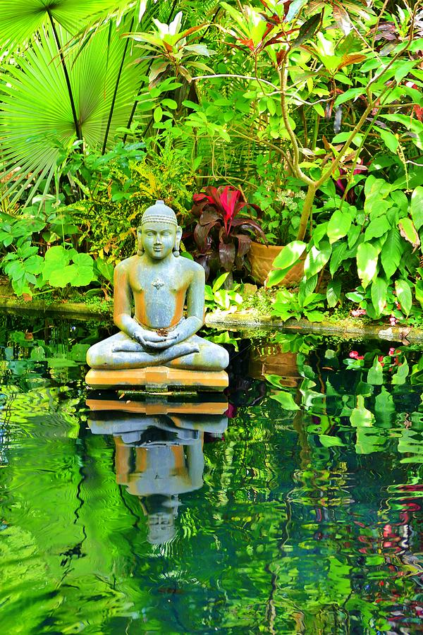Buddha's Garden Koi Pond by Don Columbus