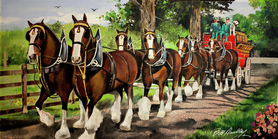 Budweiser Clydesdales by Bill Dunkley