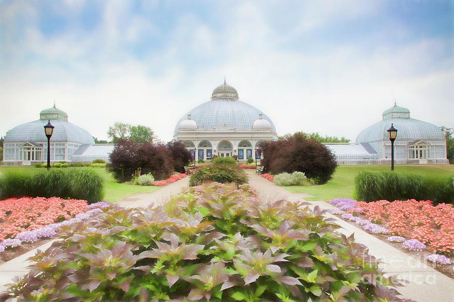 Botanic Gardens Photograph - Buffalo Botanic Gardens Conservatory by Marilyn Cornwell