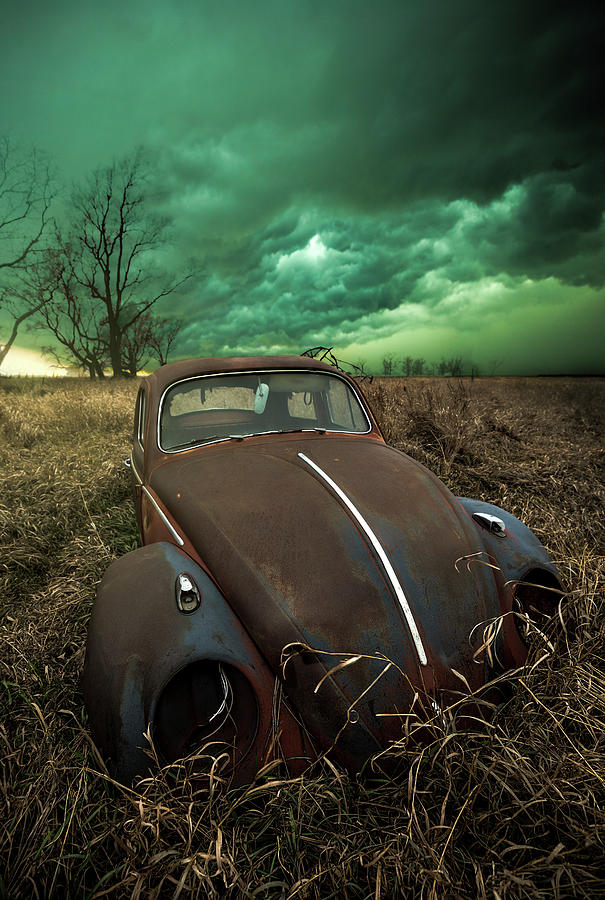 Rust Photograph - Bug by Aaron J Groen