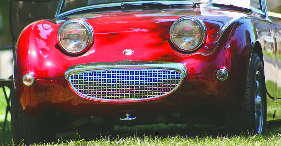 Bugeye Photograph - Bugeye Smile by Martha Johnson