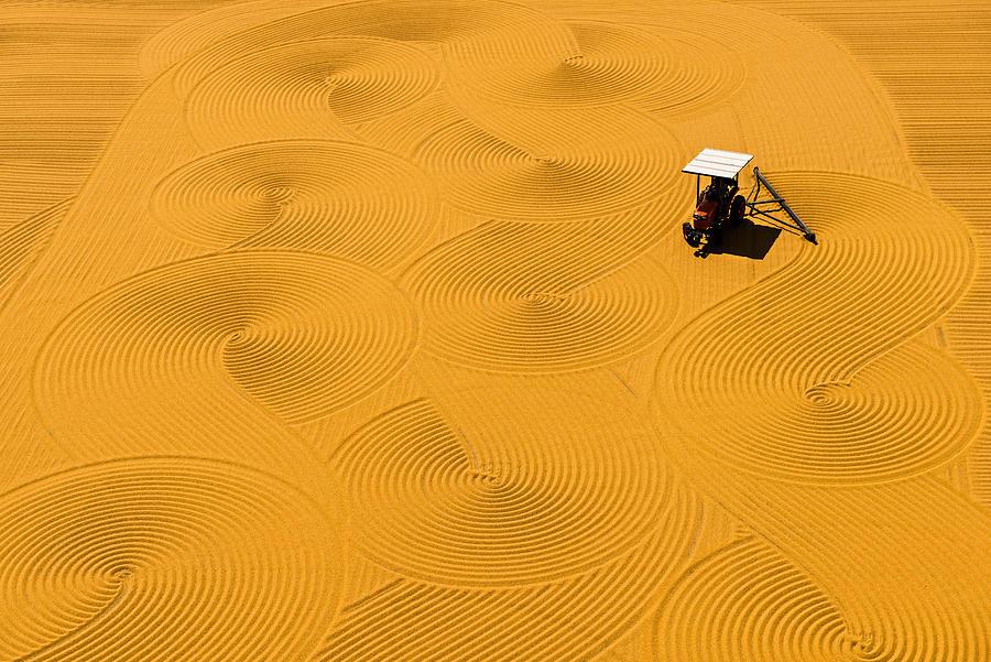 Pattern Photograph - Bulgur Drying by Melih Karakaya
