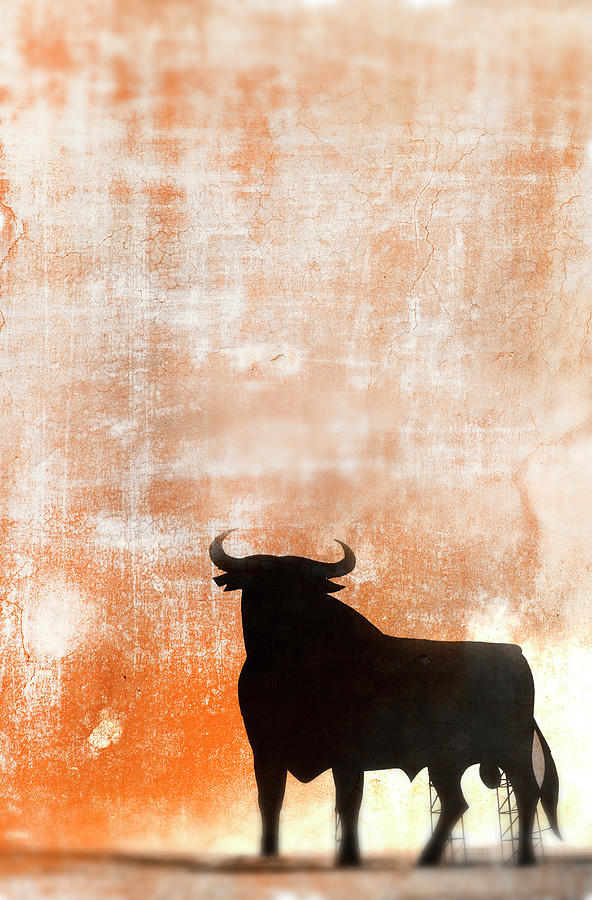 Bull Signage On Textured Background Photograph by Grant Faint