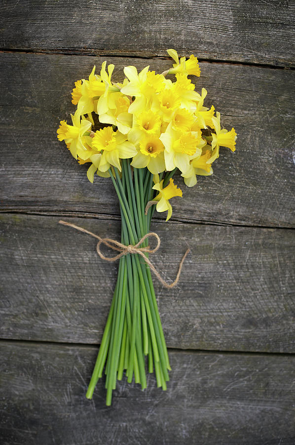 Bunch Of Daffodils On A Wooden Table Photograph by Dougal Waters