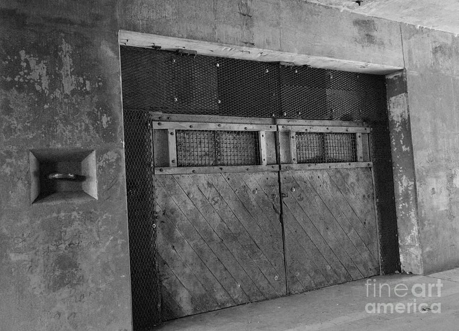 Bunker Doors by Jeni Gray