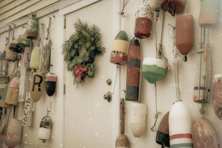 Buoys in Winter by Joann Vitali