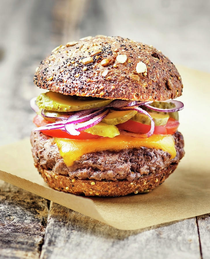 Burger Photograph by Claudia Totir