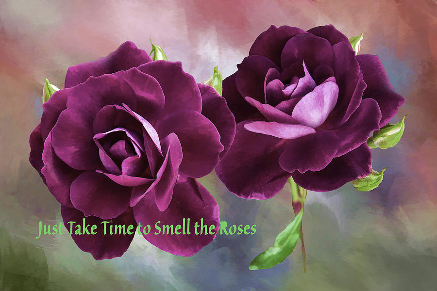 Burgundy Roses Abstract 1 Take Time To Smell The Roses Digital Art