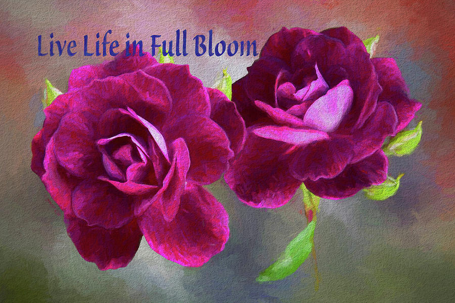 Burgundy Roses Abstract 3  Live Life In Full Bloom Digital Art