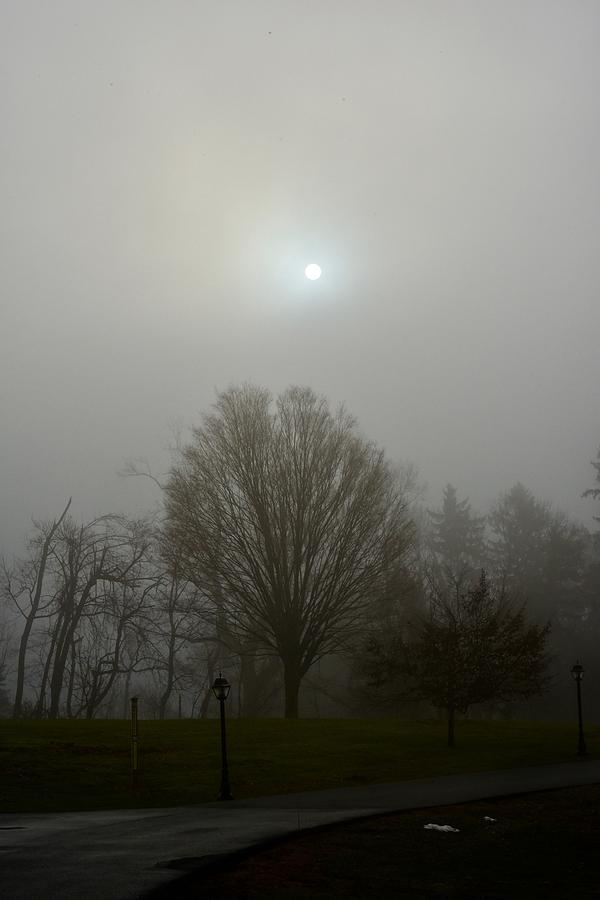 Burning Through The Fog by Cornelia DeDona