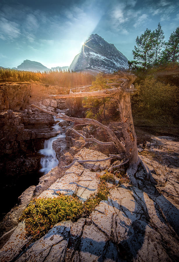 Burst of Light / Swiftcurrent Falls, Glacier National Park  by Nicholas Parker