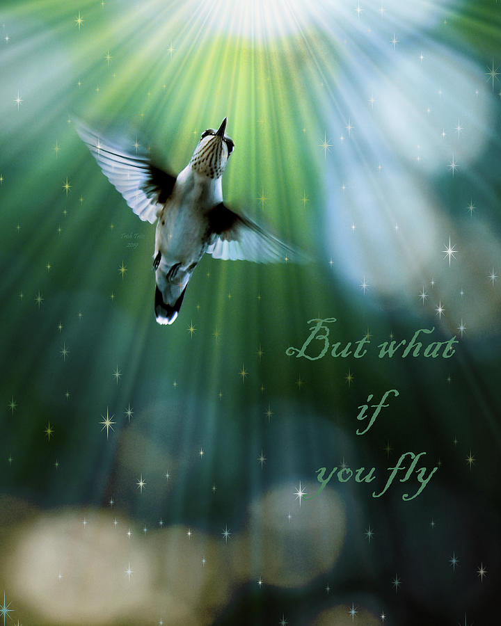 But What If You Fly by Trish Tritz