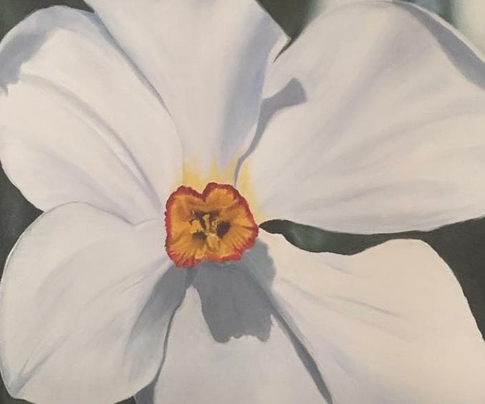 Buttercup Painting by Karen Jordan