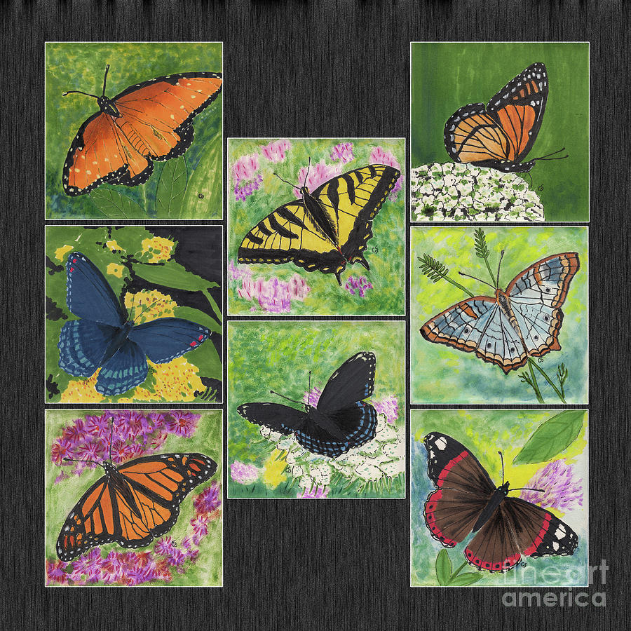 Butterflies Mixed Media - Butterflies Are Free Tile Paintings by Conni Schaftenaar