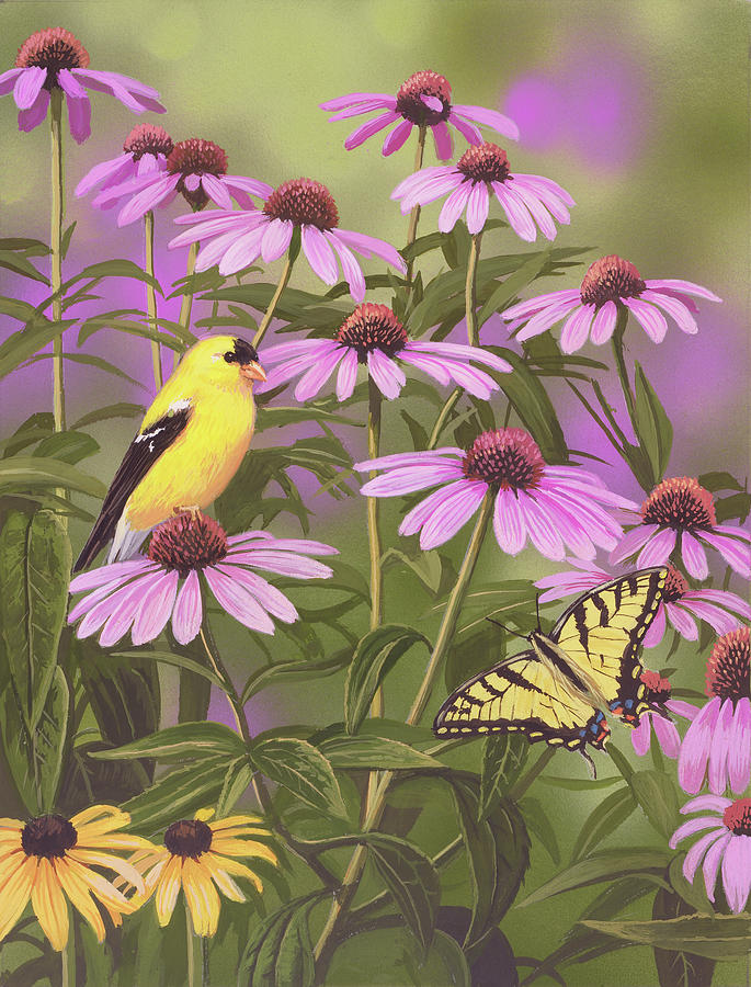 Bird Painting - Butterfly & Finch Amongst Flowers by William Vanderdasson