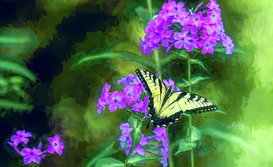 Butterfly Beauty by Marcy Wielfaert