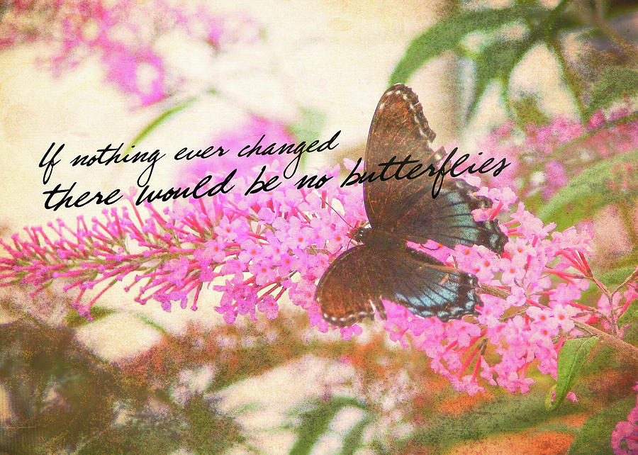 Butterfly Photograph - Butterfly Kisses Quote by JAMART Photography