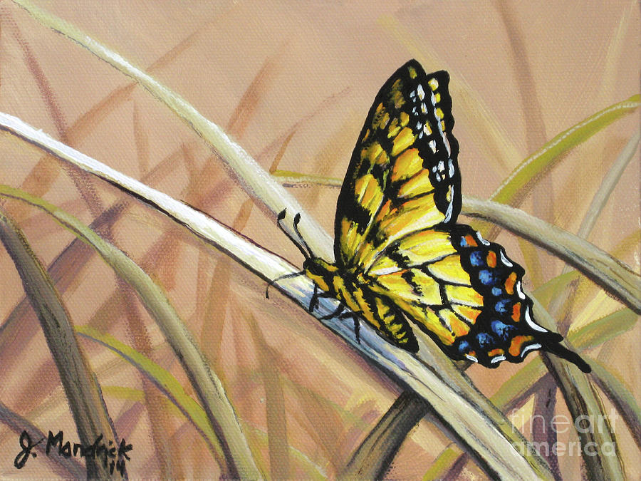 Butterfly Meadow - Part 2 by Joe Mandrick