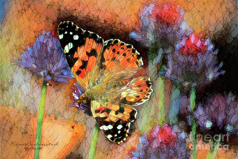 Butterfly on thistle flowers by Kira Bodensted