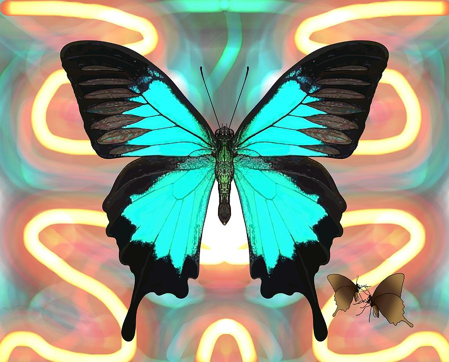 Stratton Digital Art - Butterfly Patterns 21 by Joan Stratton