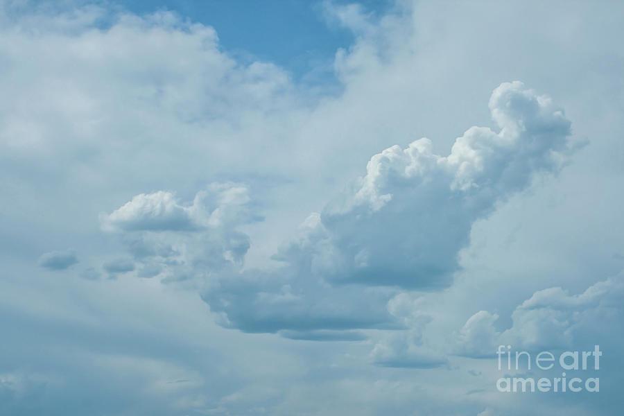 Buzzard Cloud by Tony Baca