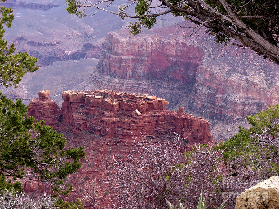 Nature Photograph - By The Ridge by Mary Mikawoz