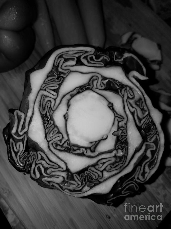 Cabbage  by Michelle S White