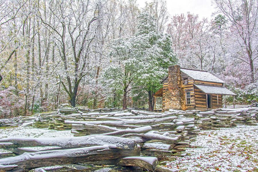 Cabin in Snow by Douglas Wielfaert