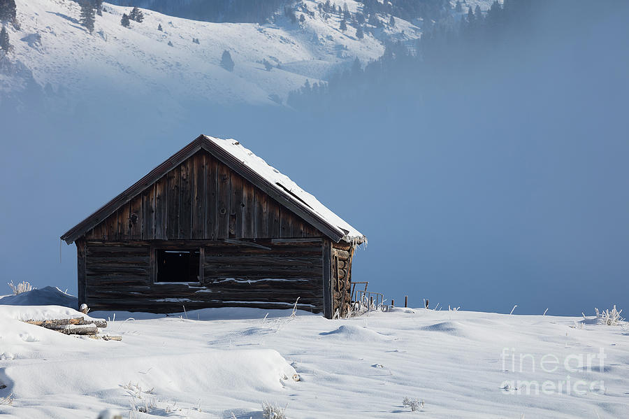 Cabin in the Mists by Idaho Scenic Images Linda Lantzy