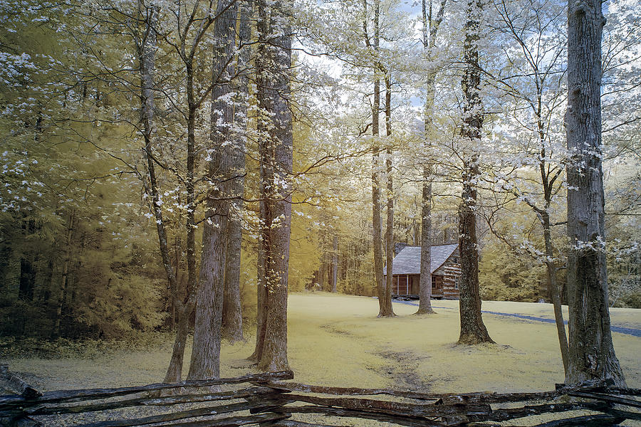Smoky Mountain National Park Photograph - Cabin In The Smokys by Jon Glaser
