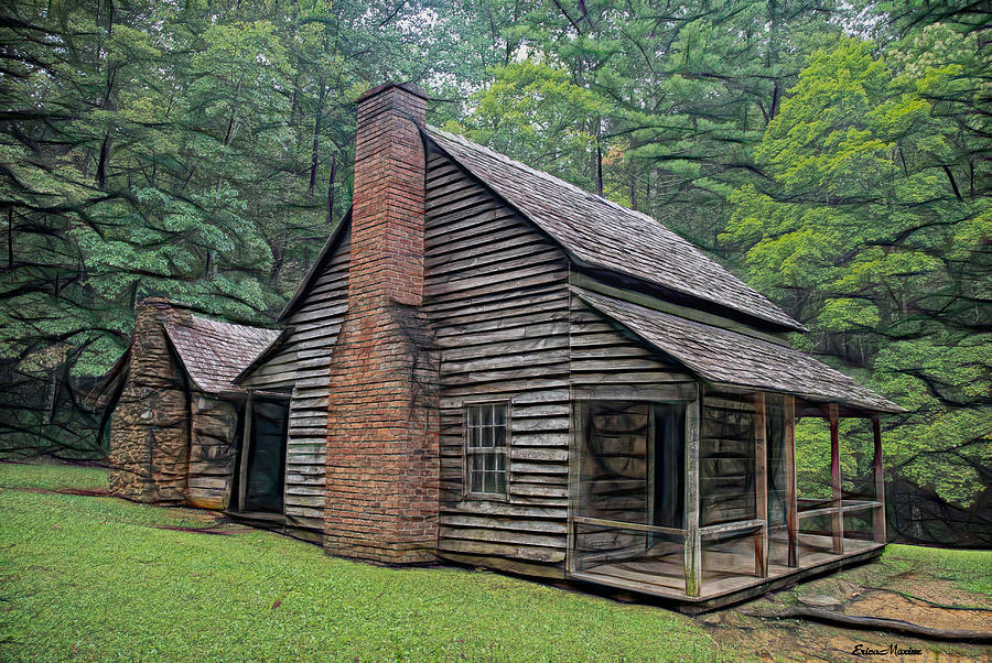 Cabin in the Woods - Fractals by Ericamaxine Price