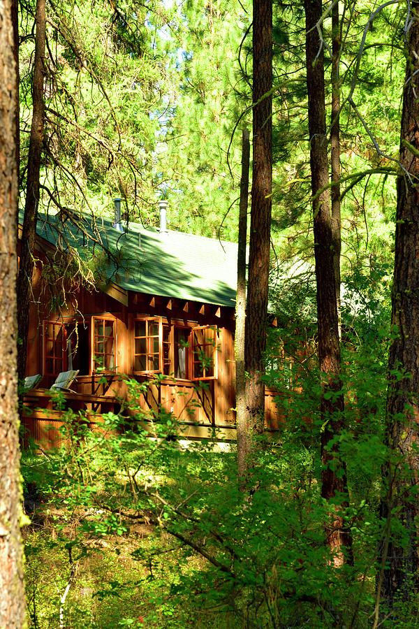 Cabin In The Woods by Jerry Sodorff