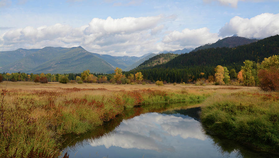 Cabinet Wilderness And Beyond Photograph