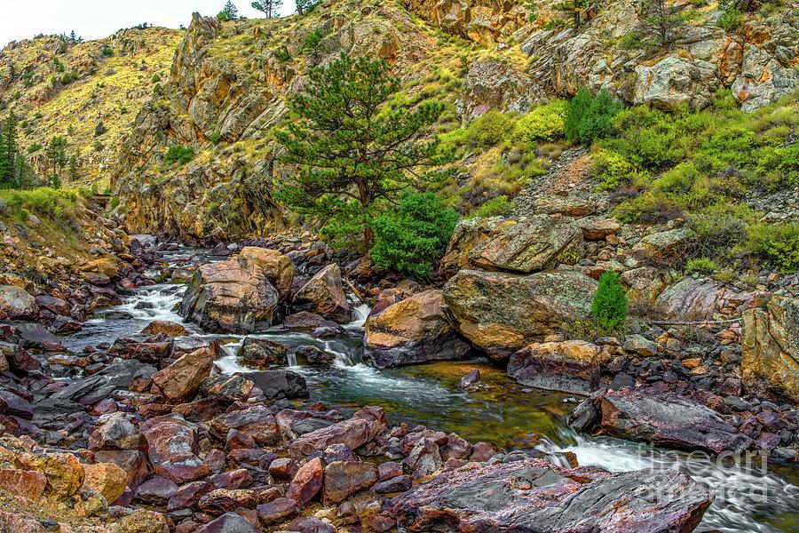 Cache La Poudre Canyon Rapids by Jon Burch Photography