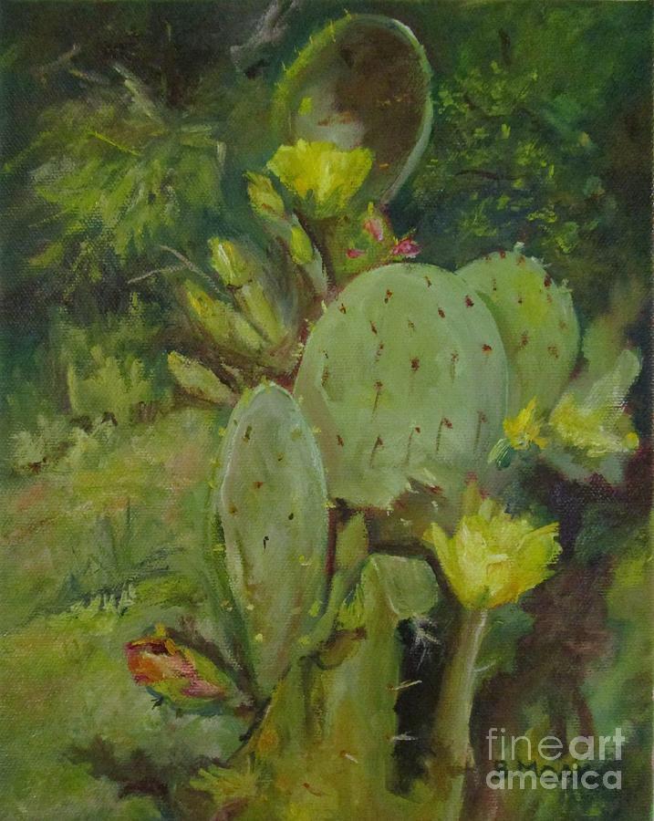 Cacti by Barbara Moak