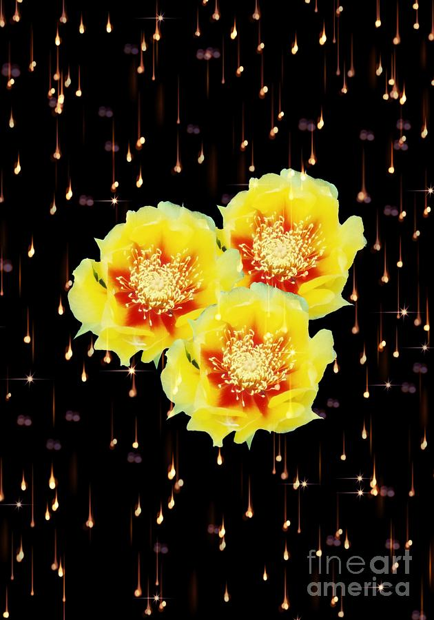 Cactus Blooms and Sparkles by Rachel Hannah