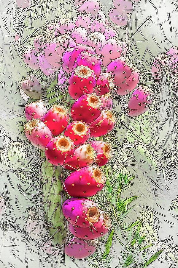 Cactus Creation by Veronika Countryman