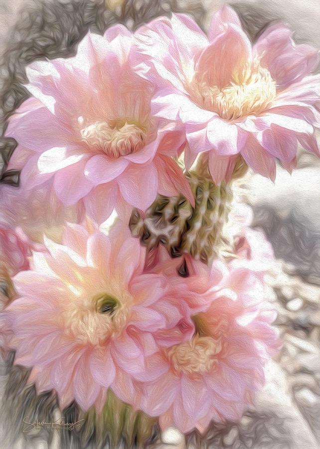 Cactus Flower 2 by Steve Kelley