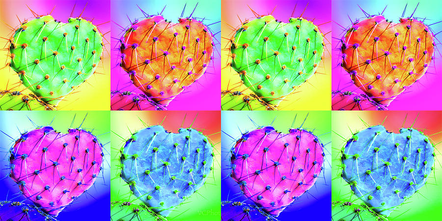 Cactus Heart Spectrum by Veronika Countryman